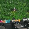 Hair dressing salon green wall