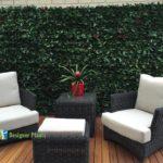 photinia leaf artificial hedges