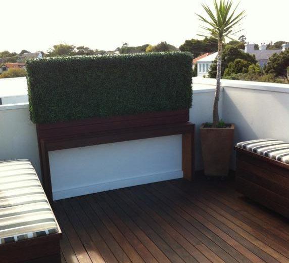 Boxwood Hedge Bayside