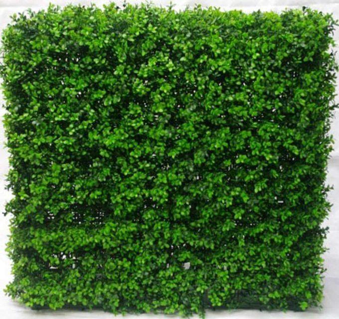 Artificial Plant-Portable Buxus Hedge UV Resistant 75cm x 75cm
