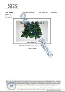 Designer Plants Test Report Page 6