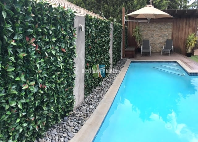 Poolside Artificial Box Hedge