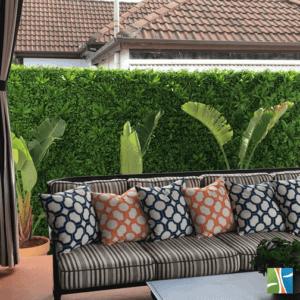Lavandula Back room green wall view