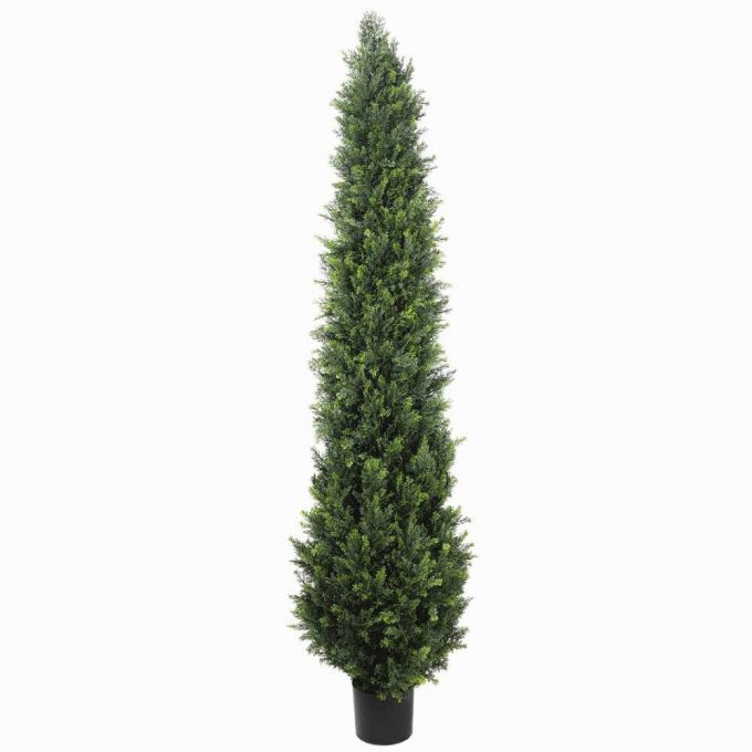 potted artificial cypress tree