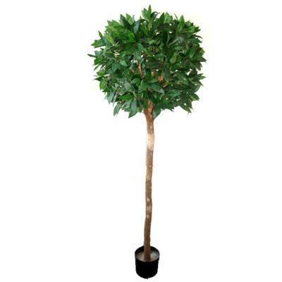 fake topiary ficus tree