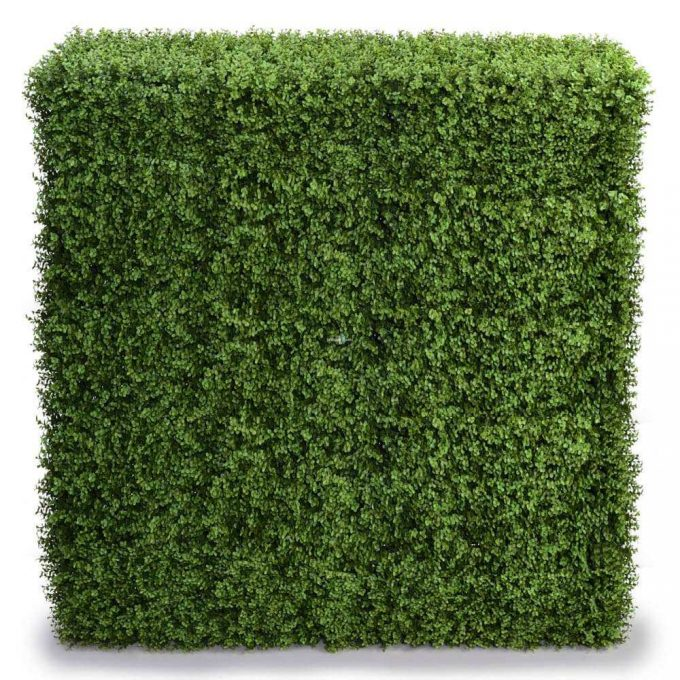 Artificial buxus hedges for events and privacy