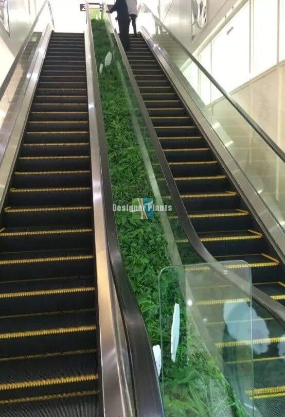 Green-Tropics-Vertical-Garden-Elevators