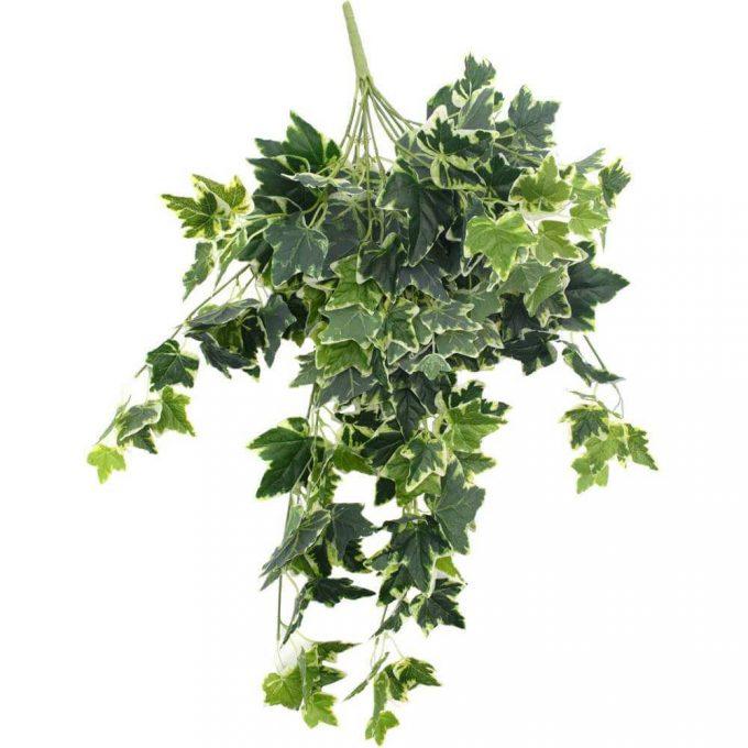 artificial ivy bush