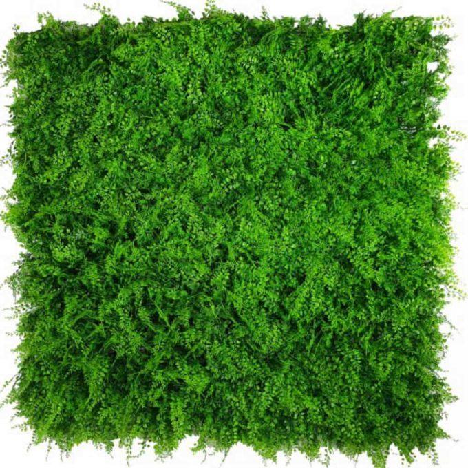 Mediterranean Fern Vertical Garden / Green Wall UV Resistant SAMPLE