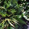 Artificial grasses and stems