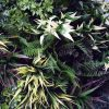 Lush artificial greenery grasses and fern