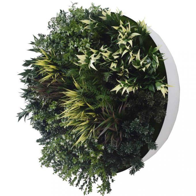 green wall disc decor