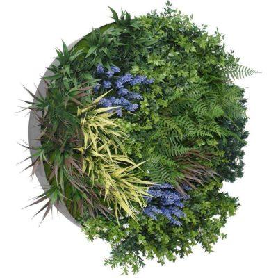 lavender green wall disc black