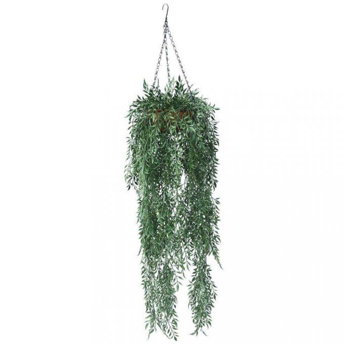 Fern Hanging Basket