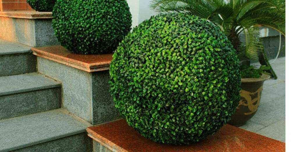 Artificial topiary garden balls and shrub plants - on a home balcony entrance