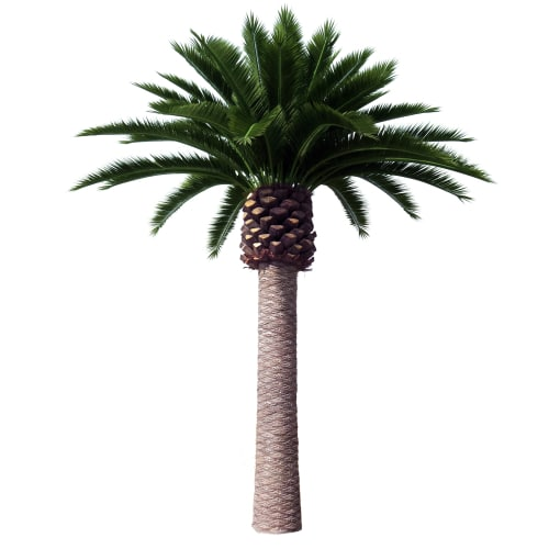 Artificial Canary Palm Tree