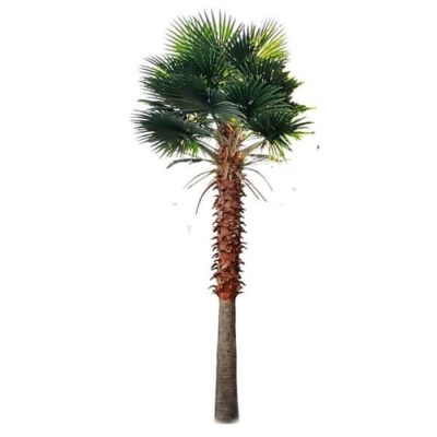 Artificial Fan Palm / Washington Palm Tree