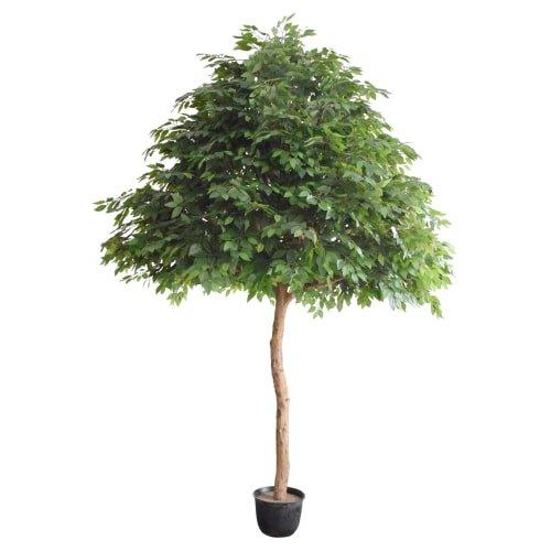 large artificial ficus tree