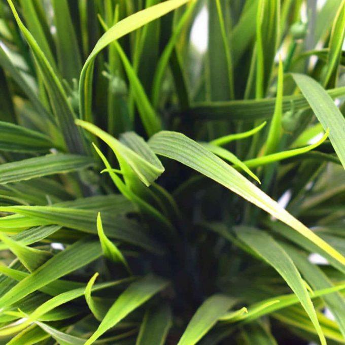 Artificial Ornamental Potted Dense Green Grass Details