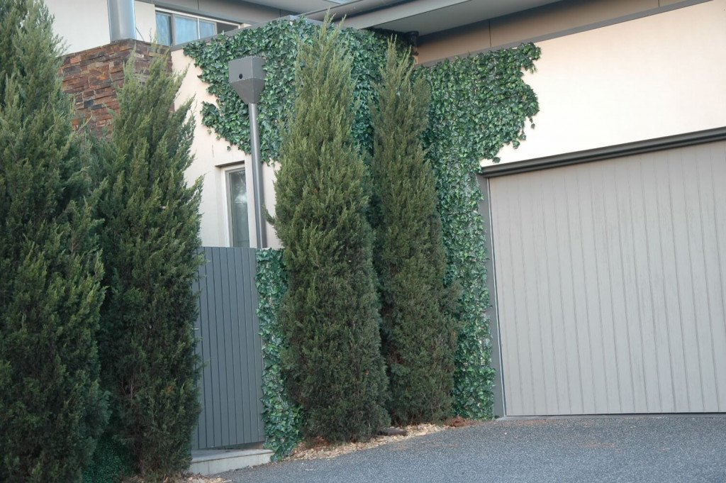 after the installation of fake ivy hedge panels