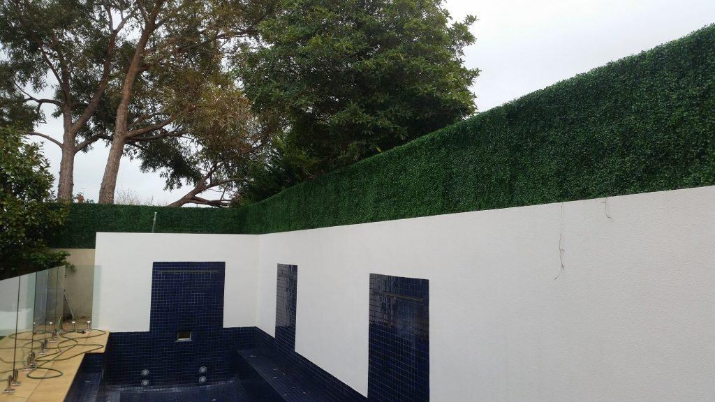 Boxwood Hedge Tile Screen Along A Pool Min