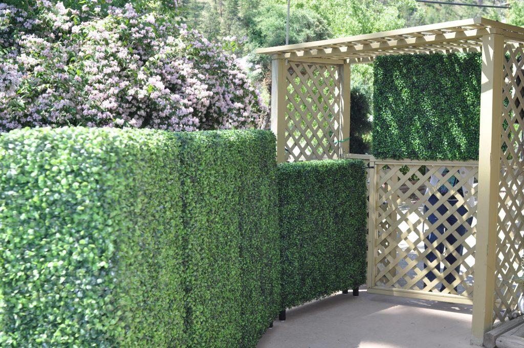 artificial mixed boxwood panels along a trellis