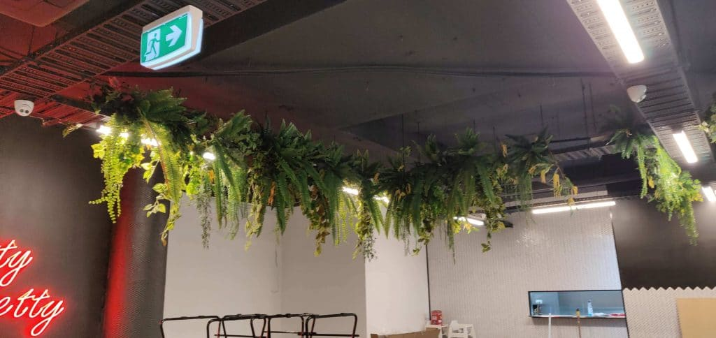 hanging fake plants in a cafe