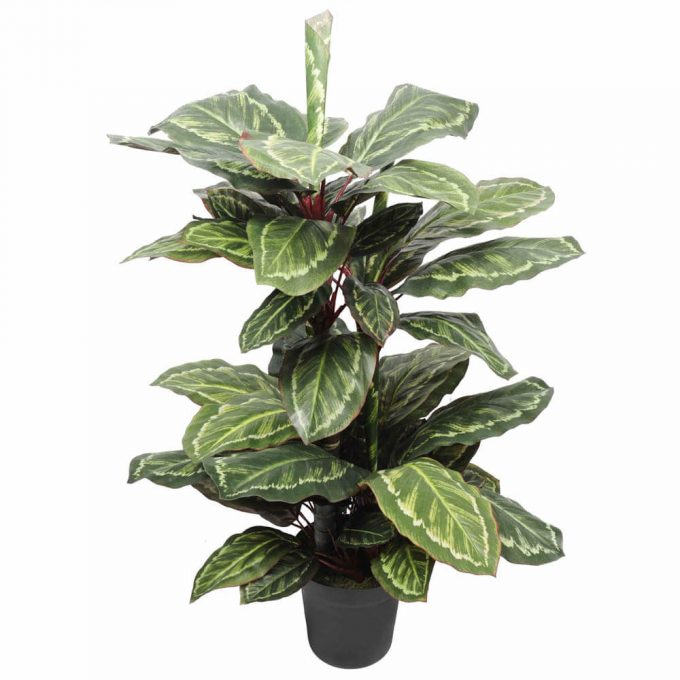 potted fake cordyline plant
