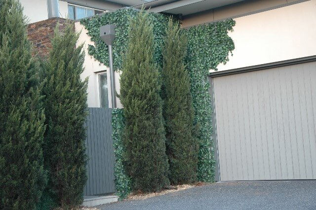 artificial ivy hedge panels
