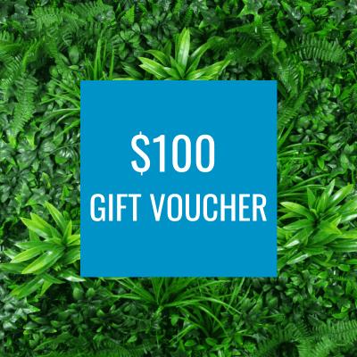 Designer Plants $100 Gift Voucher for faux plants
