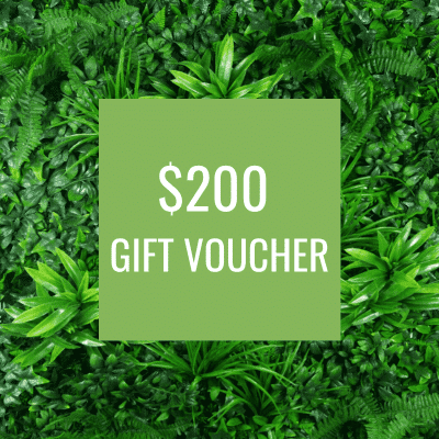 Designer Plants Gift voucher for lifelike greenery and faux plants