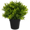 recycled artificial small potted mimosa fern