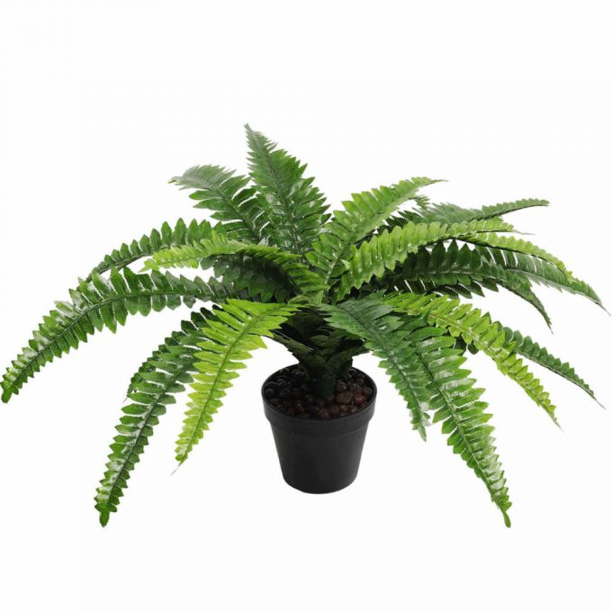 potted fake fern plant