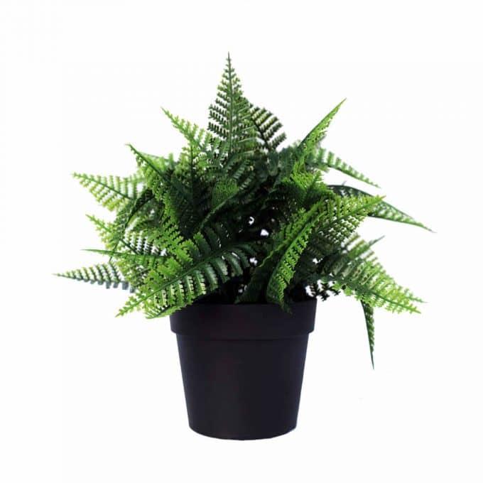artificial fern plant in a pot