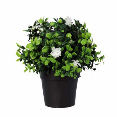 flowering boxwood fake plant
