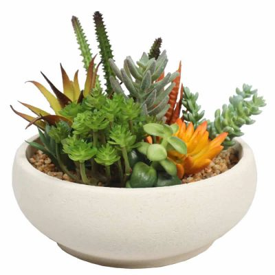 nearly natural evergreen fake succulent bowl
