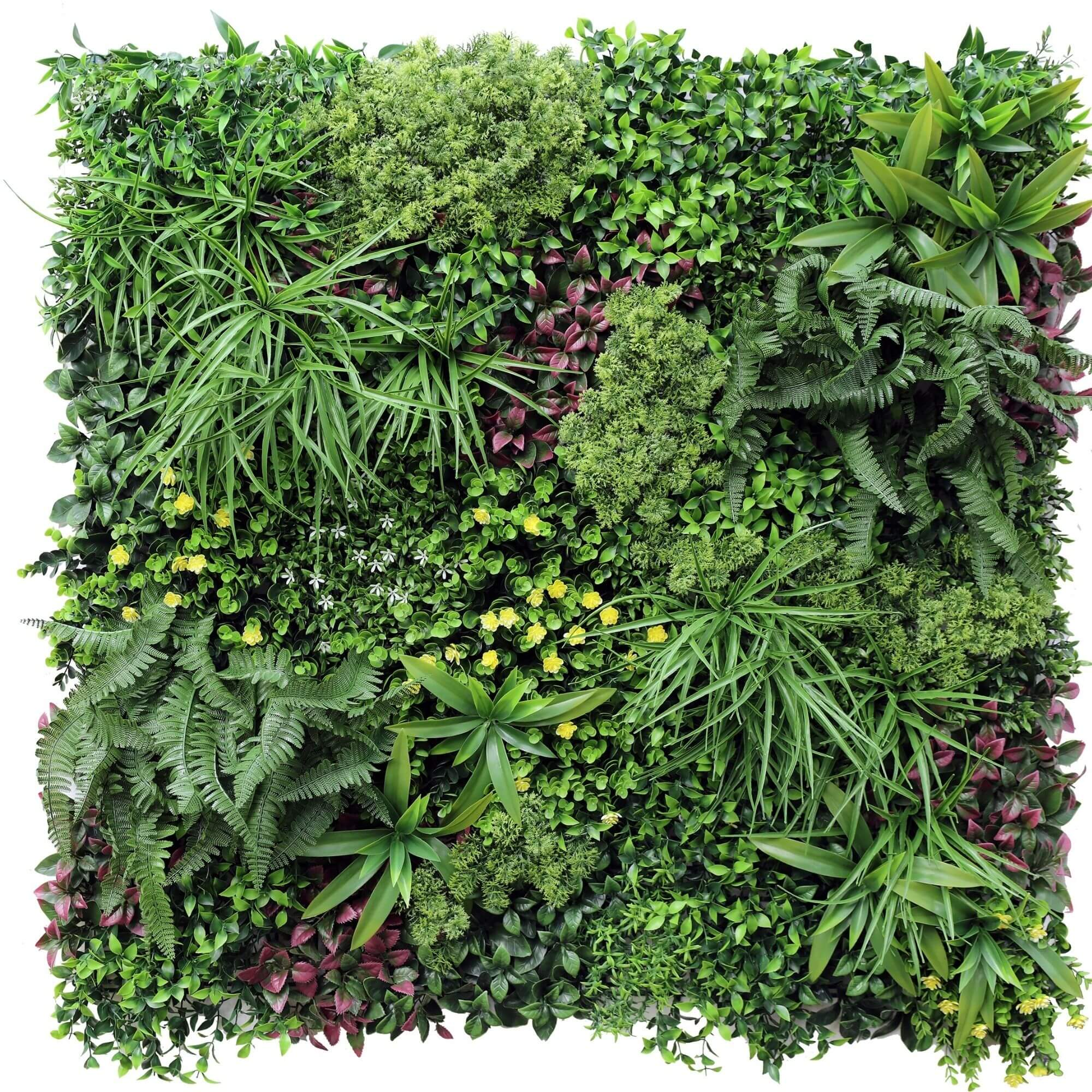 artificial vertical garden with ferns and grasses