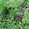flowering artificial green wall panels