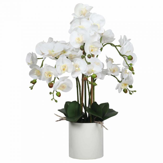 potted white faux orchid plant