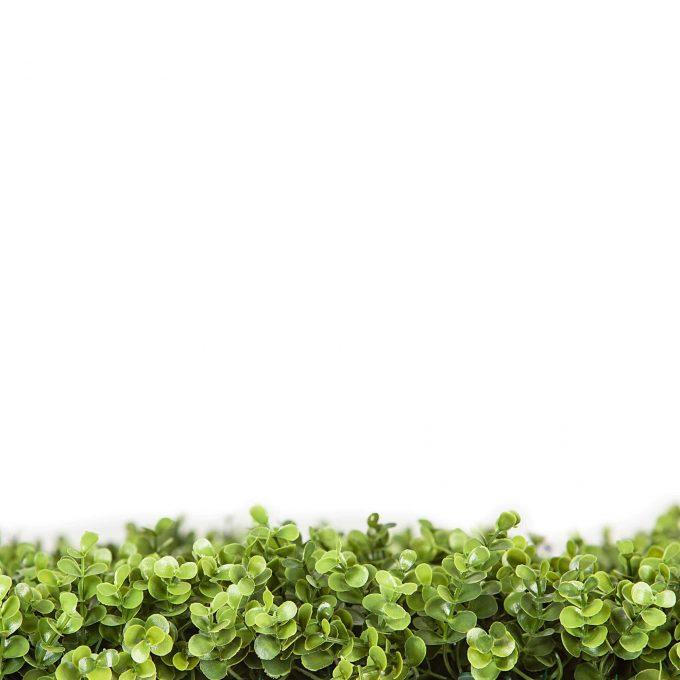 fake buxus hedge