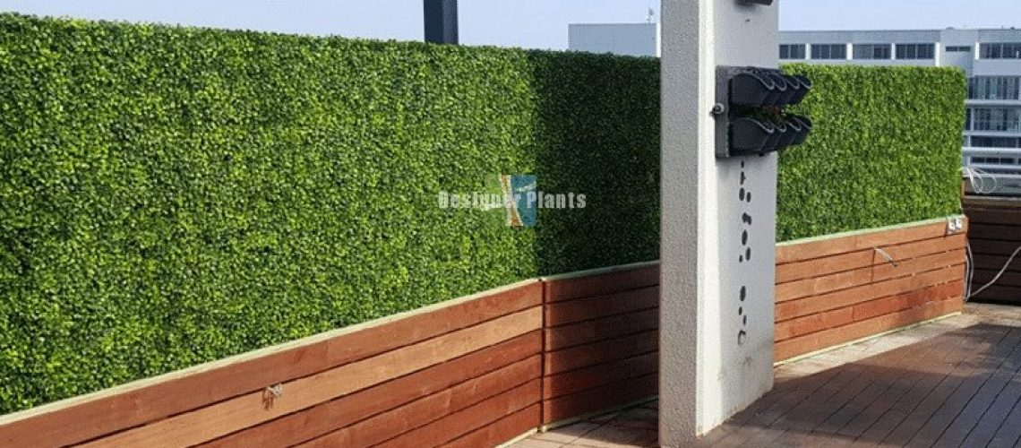 Artificial Hedges provide privacy screening combined with wood panels